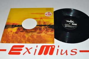 "DJ Red - Everything Has Changed / Paradise 12"" LP Używ."